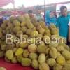 Festival Durian Mijen 2016
