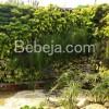 Taman Dinding Hijau Royo-royo