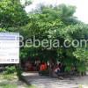 Wisata Bahari Pulau Samalona