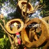 Kreasi Batang Pohon Besar
