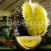 Patung Durian Di Bandara Changi