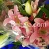 Semerbak Harum Bunga Lilium