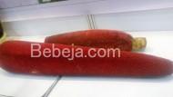 Mujarab Buah Merah Papua