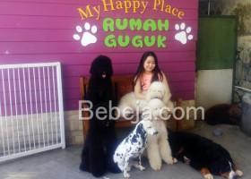 Guk…Guk…Rumah Guguk Bandung