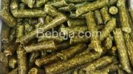 Produksi Pelet Alfalfa