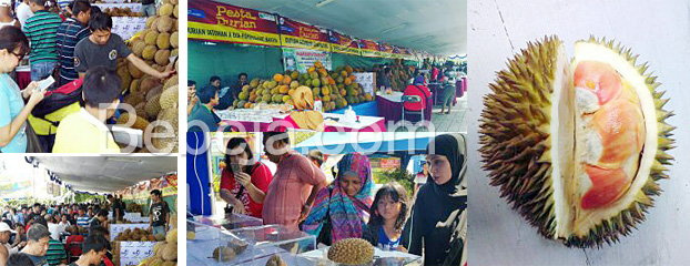 Pesta-Durian-2016