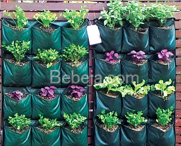 kantong-tanam-vertikal-sayuran