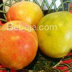 Mangga Agrimania Dari Indramayu