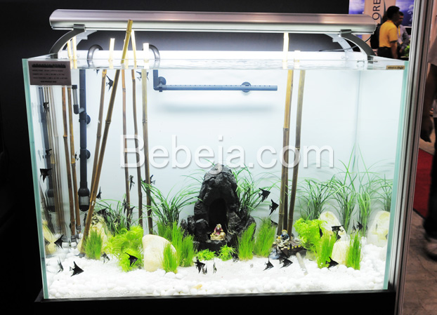 ornamen-dalam-akuarium