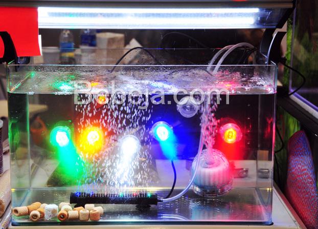 variasi-lampu-akuarium
