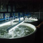 I Nyoman Kabinawa Periset Biodiesel Alga