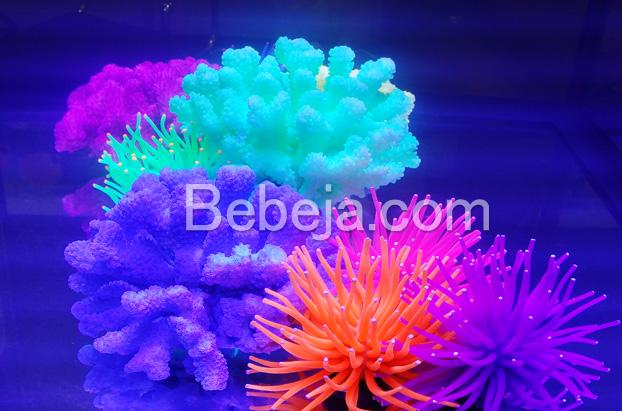 koral-neon-artifisial