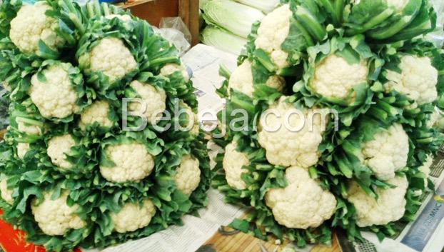 sayuran-kembang-kol