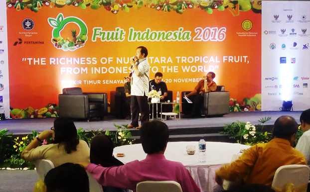 fruit-indonesia-2016