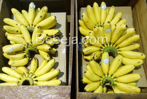 pisang-mas-kirana