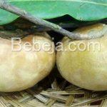 Bisbul Cokelat Dari Kabupaten Sarolangun