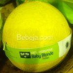 Melon Hidroponik Baby Blonde