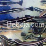 Budidaya Ikan Cobia