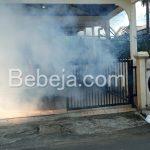 Fogging Nyamuk Aedes